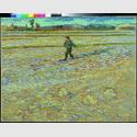 Vincent van Gogh: Le semeur (Der Sämann), 1888, Öl auf Leinwand, 72 x 91,5 cm, Hahnloser/Jaeggli Stiftung, Winterthur, Foto: Reto Pedrini, Zürich